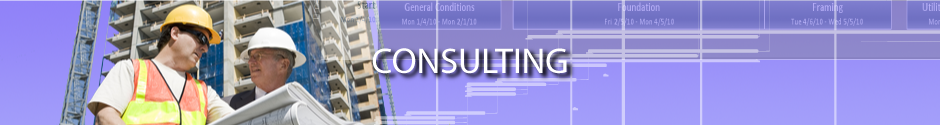 CONSULTING_HEADER2_web